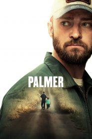 Palmer online